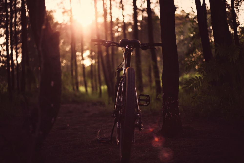 best mountain biking trails