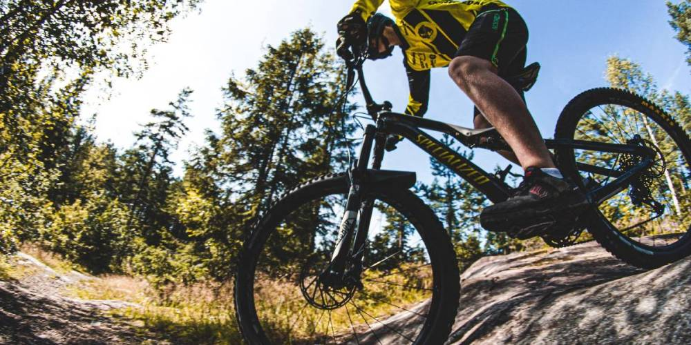mountain bike under 1000 dollars
