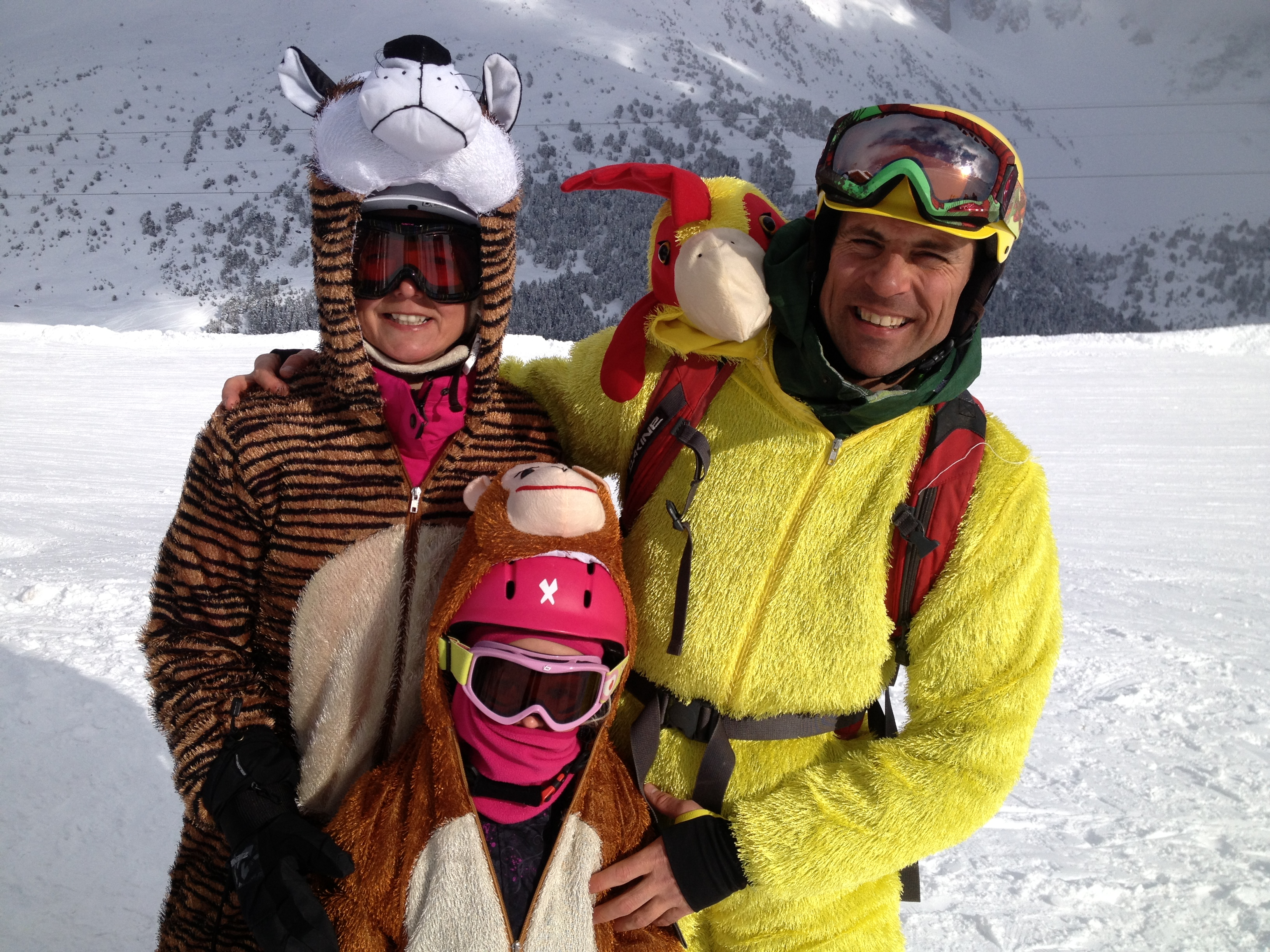 Tiger, Monkey & of course a Coq!