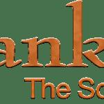 franklin-straps-logo