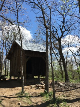 Springer Mountain Shelter