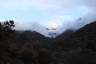 Misty mountains cold