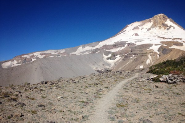 Timberline Trail towards Mt Hood on Gnarl Ridge