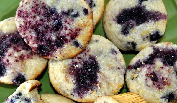 blueberry-muffin-sugar-lemon-crust