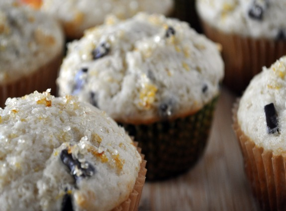 blood-orange-muffin-recipe-mountain-mama-cooks-5