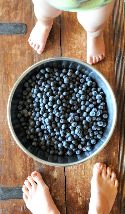 Blueberry & Vanilla Bean Syrup, www.mountainmamacooks.com
