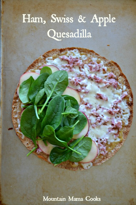 Ham, Swiss & Apple Quesadilla, www.mountainmamacooks.com