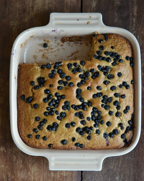 Snack Cake with Applesauce & Blueberries, www.mountainmamacooks.com