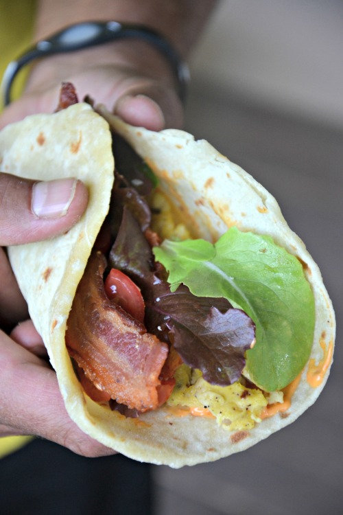 BLT Breakfast Taco, www.mountainmamacooks.com