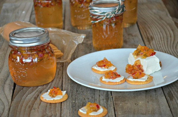 Apricot Pepper Jelly | mountainmamacooks.com