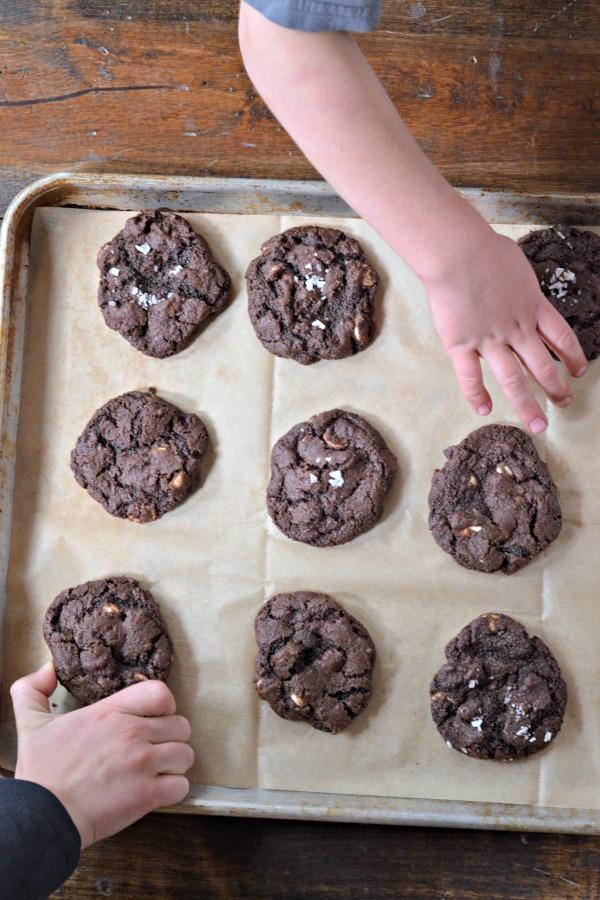 Chocolate Chocolate Chip Cookies | mountainmamacooks.com