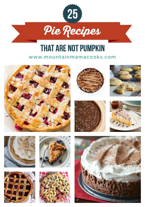 25 Pie Recipes | mountainmamacooks.com