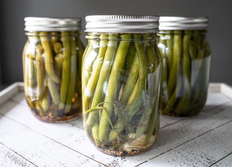 Three mason jars filled with sweet pickled green beans. Recipe made for Dixie Crystals.