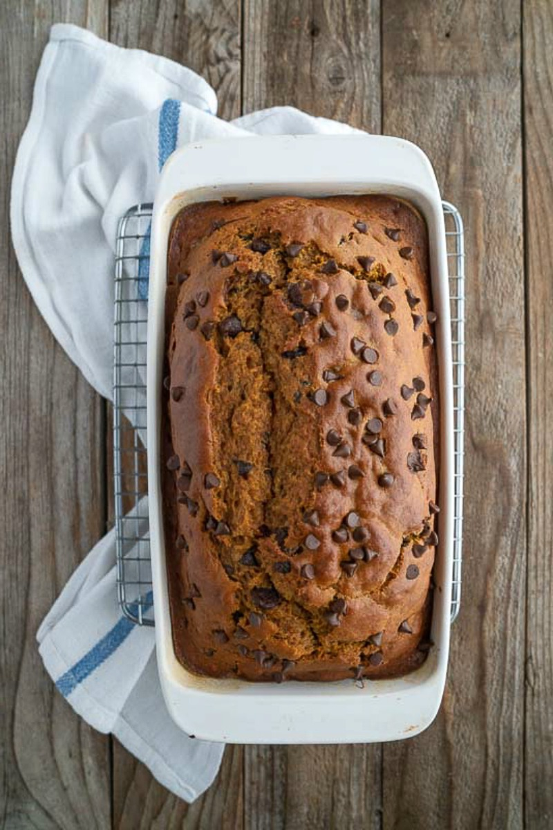 A wooden backdrop with a white loaf pan. Warm pumpkin chocolate chip bread right from the oven. www.mountainmamaacooks.com
