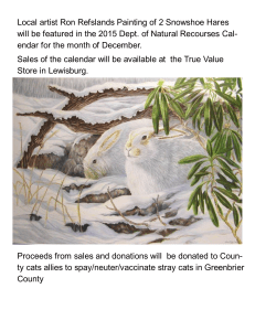 Local artist Ron Refsland's painting of two snowshoe hares will be featured in the 2015 Department of Natural Recourses Calendar for the month of December. Sales of the calendar will be available at the True Value Store in Lewisburg. Proceeds from sales and donations will be donated to County Cats Allies in cooperation with the Greenbrier Humane Society to spay/neuter/vaccinate stray cats in Greenbrier County.