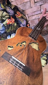 The Greater Greenbrier Valley Association of Ukulele Optimists meets every Thursday at Carnegie Hall in May and June.