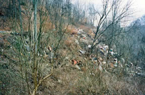 Russell County Dump before the cleanup
