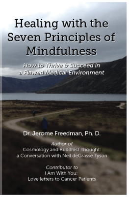 Indiegogo Campaign for Healing with the 7 Principles of Mindfulness