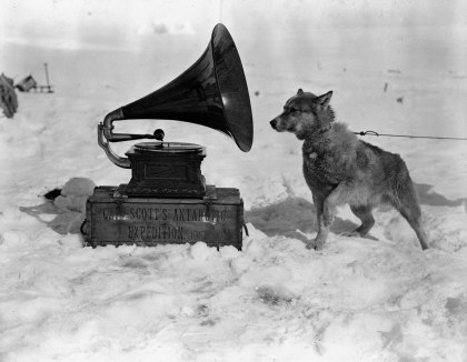 "Dog Chris, listening to the gramophone, Antarctica"" - photograph taken in January 1911 by Herbert Ponting, Robert Falcon Scott's official photographer for the the Terra Nova Expedition (media.aphelis.net)"