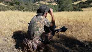 ground squirrel hunting with airguns