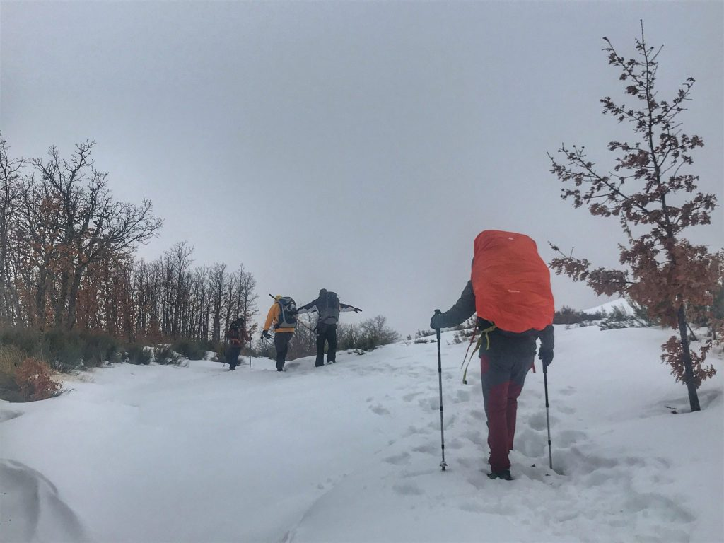 Winter camino pilgrims walking through the snow.