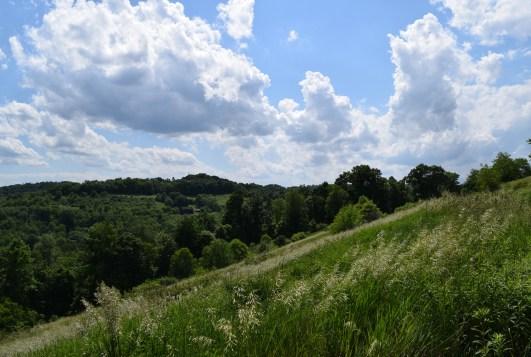 Mountain Trail walk