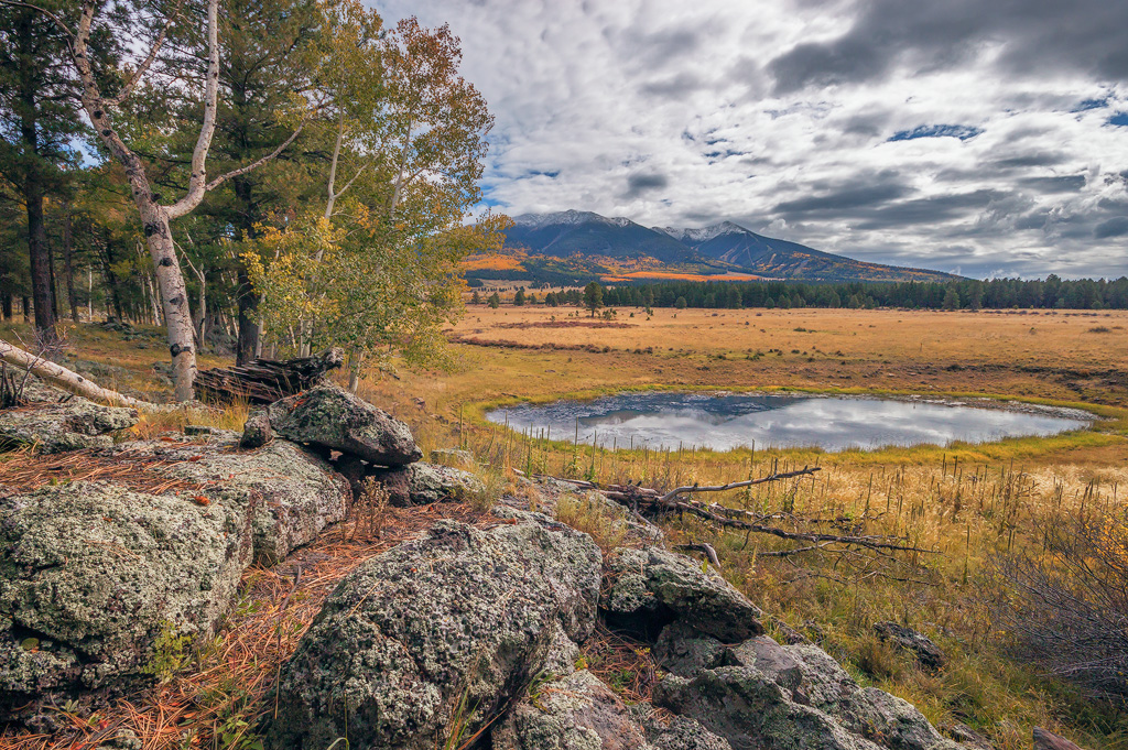 san francisco peaks fall colors