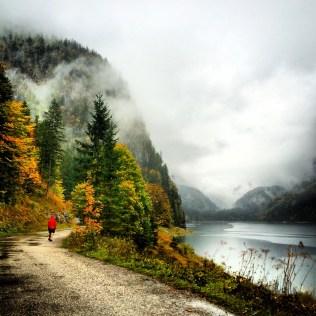 Alp-y stroll