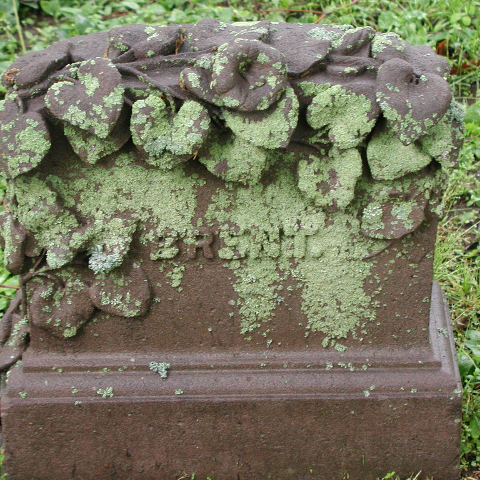 A small brownstone monument carved with leaves and lilies. Bright green lichen covers the surface.