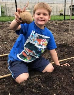 Boy holding up a potato
