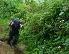 6 days Mount Elgon mountain hiking safari Uganda