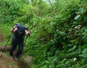 Uganda Mountain Hiking Safaris to Mount Elgon - Uganda Safari News
