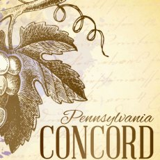 Concord Label Icon