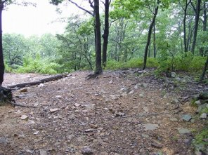 Wide swath of use on the right side of descent to Lynch Overlook