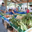 Sweet South Carolina Corn
