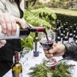 A National Vineyard Visits Mount Pleasant: Wine Under the Oaks 2014