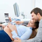 Baby Fever: Understanding the Fertility Journey