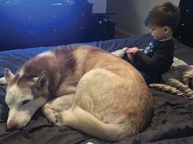 Baby Callan with dog, Harley