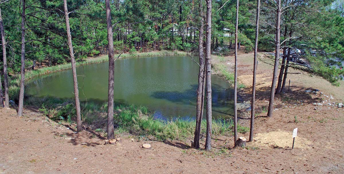 A long-neglected pond will be a pleasant place for people to eat lunch or simply enjoy the company of their co-workers or fellow tenants.