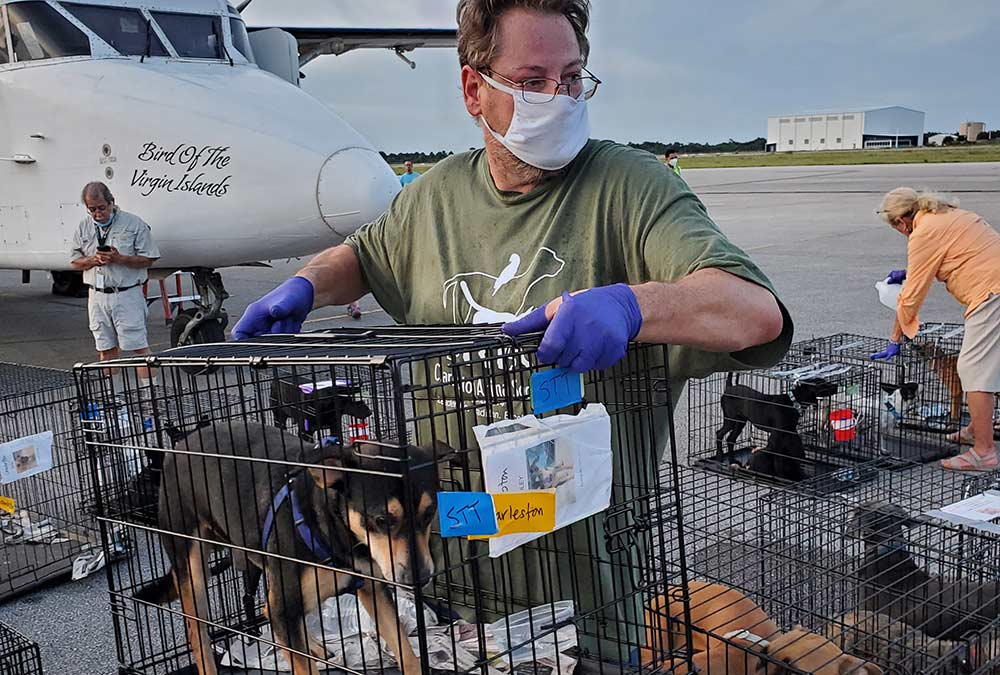 Charleston Animal Society Volunteer Wes Lowther on an emergency transport.