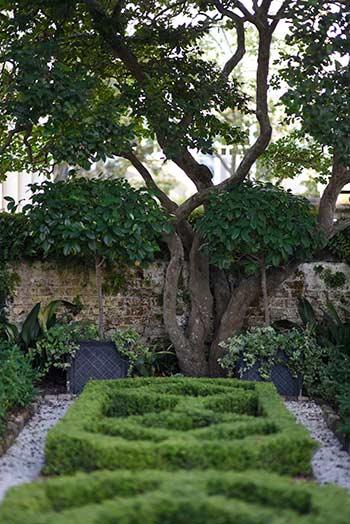 Garden featured in the Preservation Society of Charleston's Master Garden Series tour. Charleston, SC. Photo courtesy of The Preservation Society of Charleston.