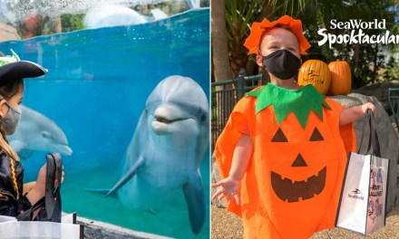 SEAWORLD HALLOWEEN SPOOKTACULAR promises seasonal fun at San Diego and Orlando parks