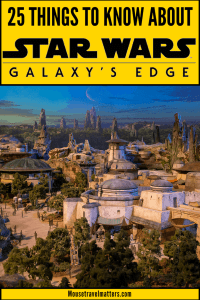 Galaxy's Edge, the new attraction will take you inside the world of Star Wars with your own story and missions which is more immersive than just an open theme park where you wander around to various shops and rides.  #vacationsideas #starwars #waltdisneyworld #disney #disneyworld #hollywoodstudios #galaxysedge #disneyparks#starwarsgalaxysedge #GalacticNights  #BlackSpireOutpost