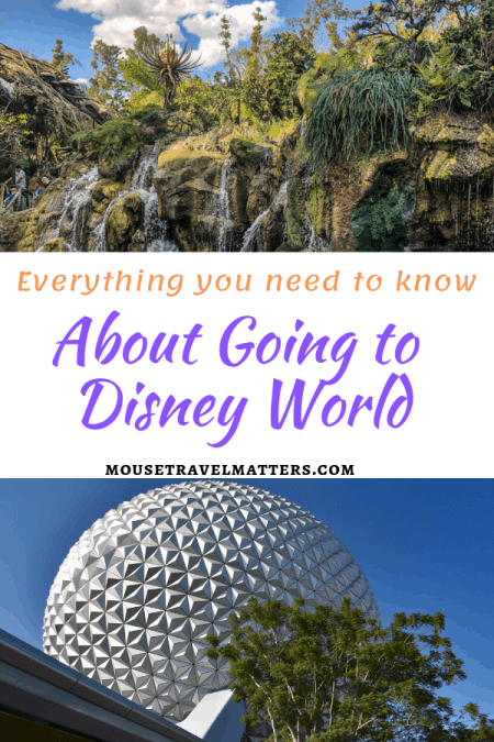 Everything You Need to Know About Going to Disney World