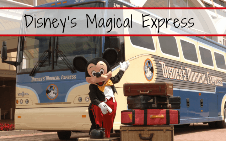 There are many perks of staying at a Disney Hotel, but one of our favorite is Disney's Magical Express. We will share tips like who can use Disney's Magical Express, how to get between parks, how to book a Disney's Magical Express, and more! Come check out all of our Disney bus tips and save it to your Disney board so you can find it later. #Disney #magicalexpress #Disneytransportation