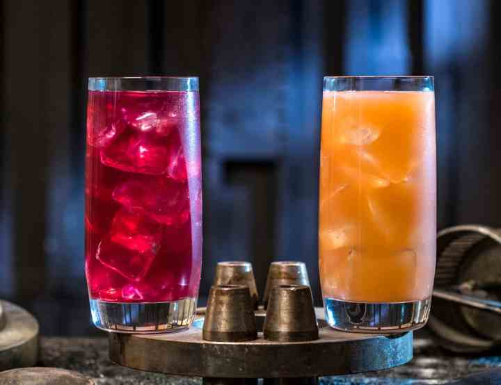 The Phattro and Moof Juice ©Disney Parks