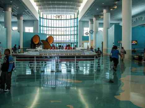 Guide to disembarkation in Port Canaveral for Disney Cruise