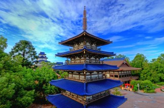 Walt Disney World Gallery Photo