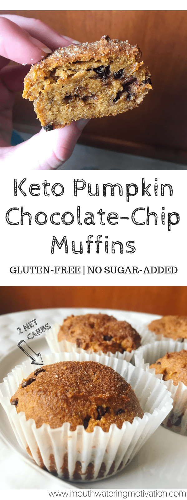 Keto Chocolate-Chip Pumpkin Spice.png