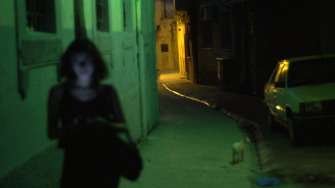 "Sophie Deraspe's ""Amina Profile: A Gay Girl in Damascus"""